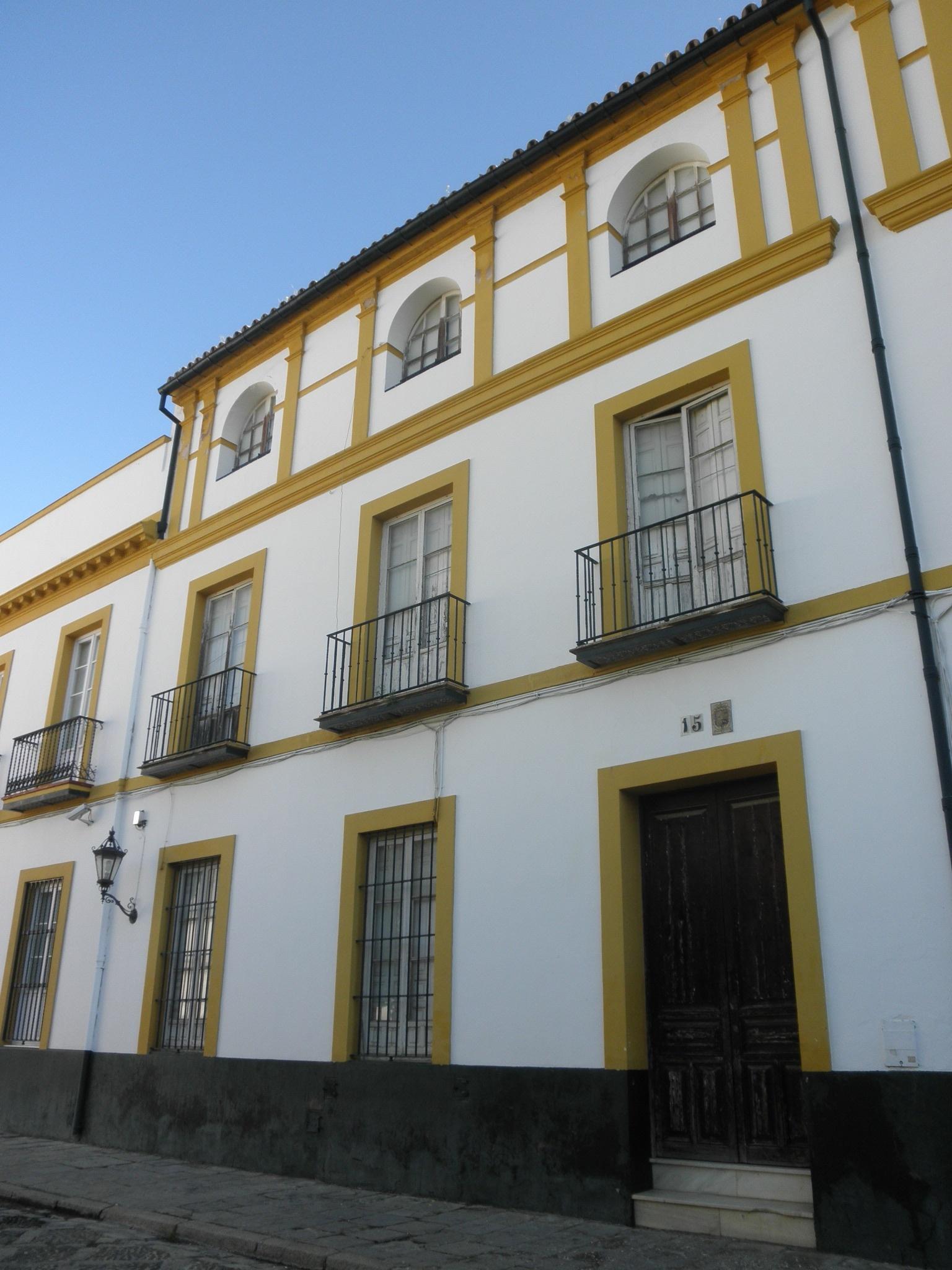 El PSOE reclama que el Estado paralice la enajenación de siete viviendas del entorno del Patio de Banderas