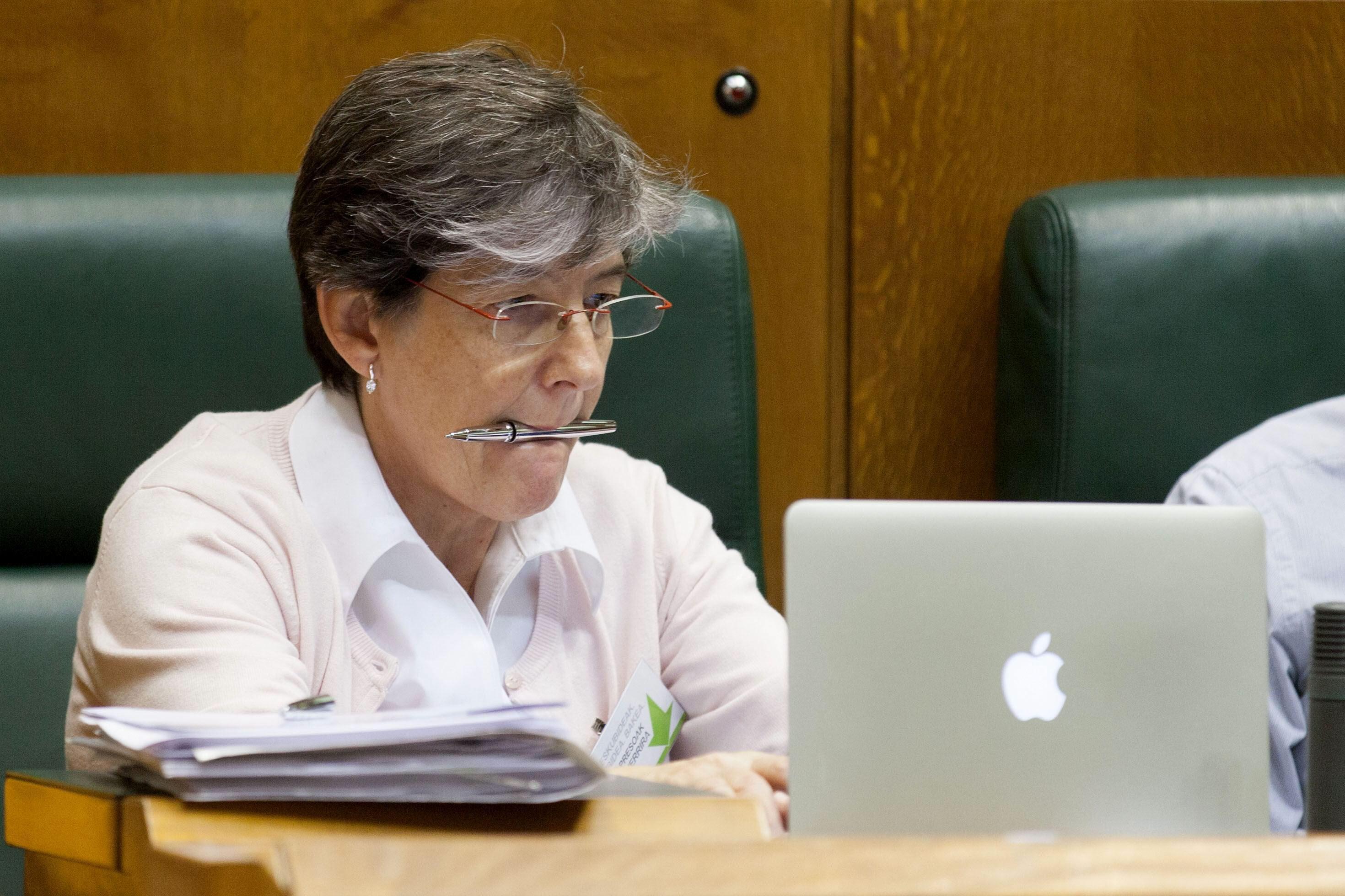 El Parlamento Vasco pide que desaparezca la figura del delegado del Gobierno