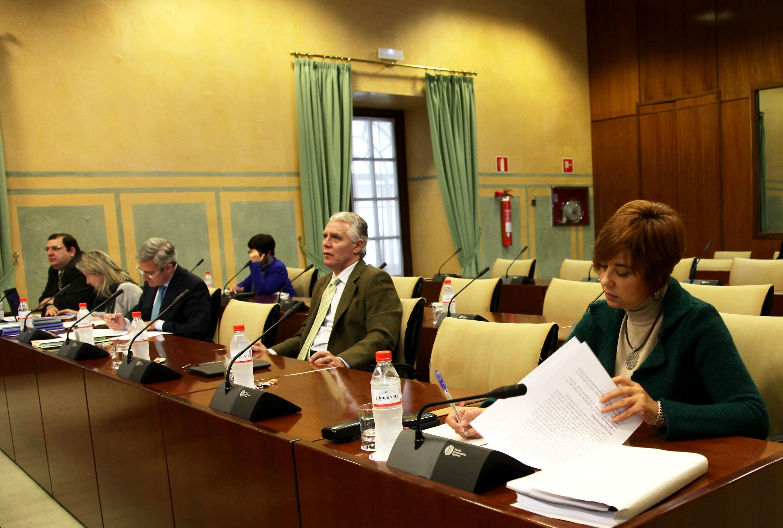 IULV-CA pide a De Llera que aclare si prevé sustituir «por completo» la vigilancia privada en juzgados por Guardia Civil