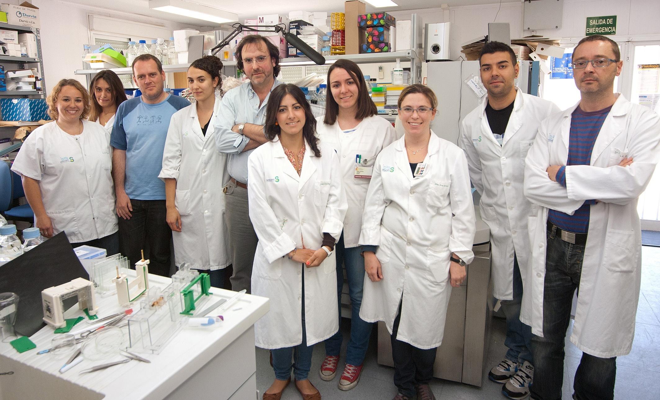 Científicos del Hospital Parapléjicos diseñan un método para aislar células implicadas en la restauración de la mielina