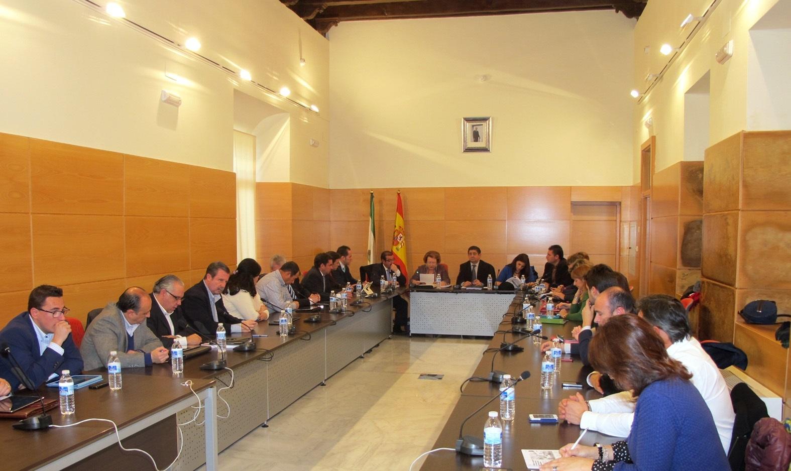 El pleno de la Diputación aprueba iniciar el procedimiento para la adopción de la bandera de la provincia
