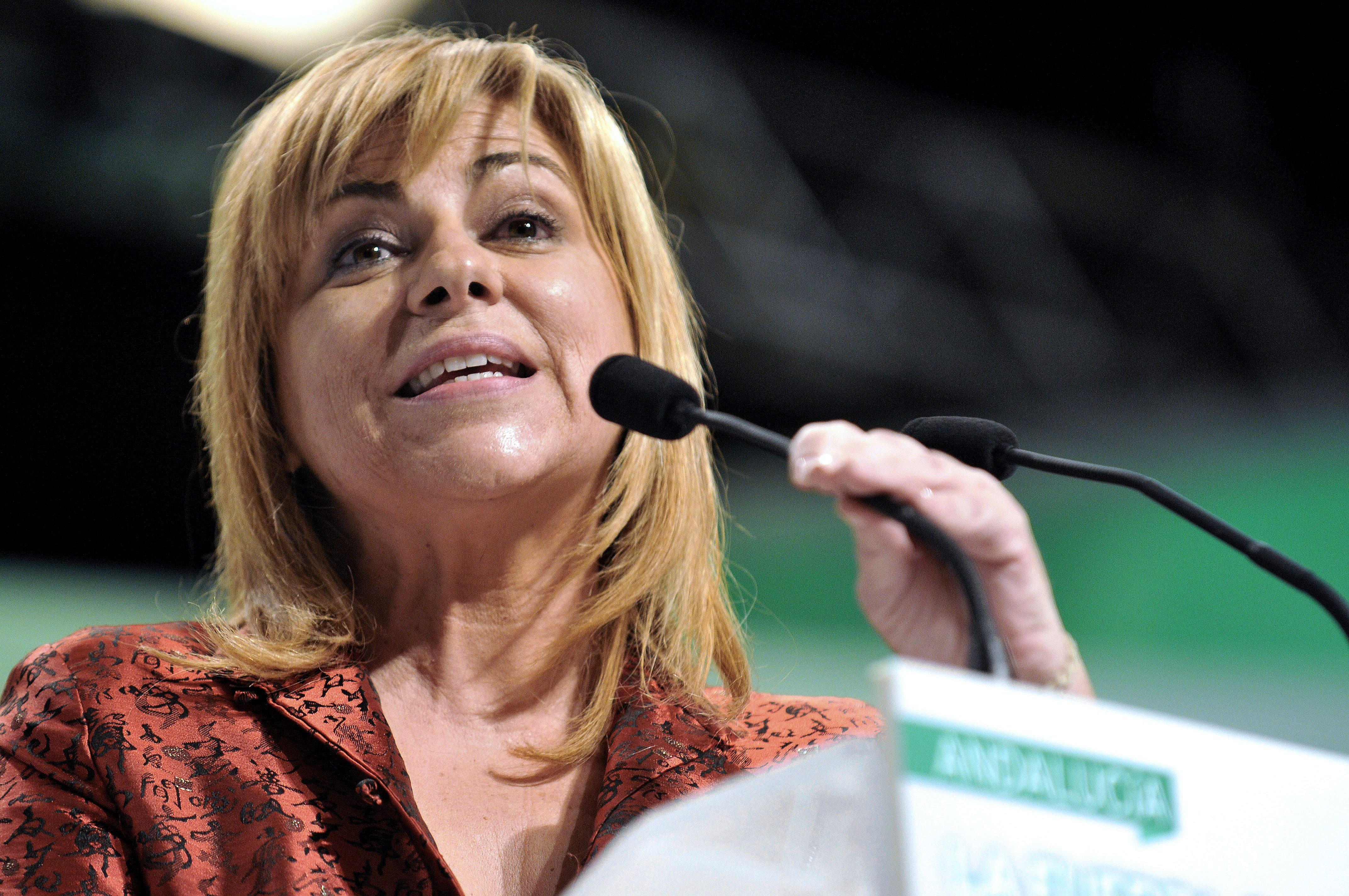 El PSOE aborda con eurodiputados la estrategia contra la reforma del aborto