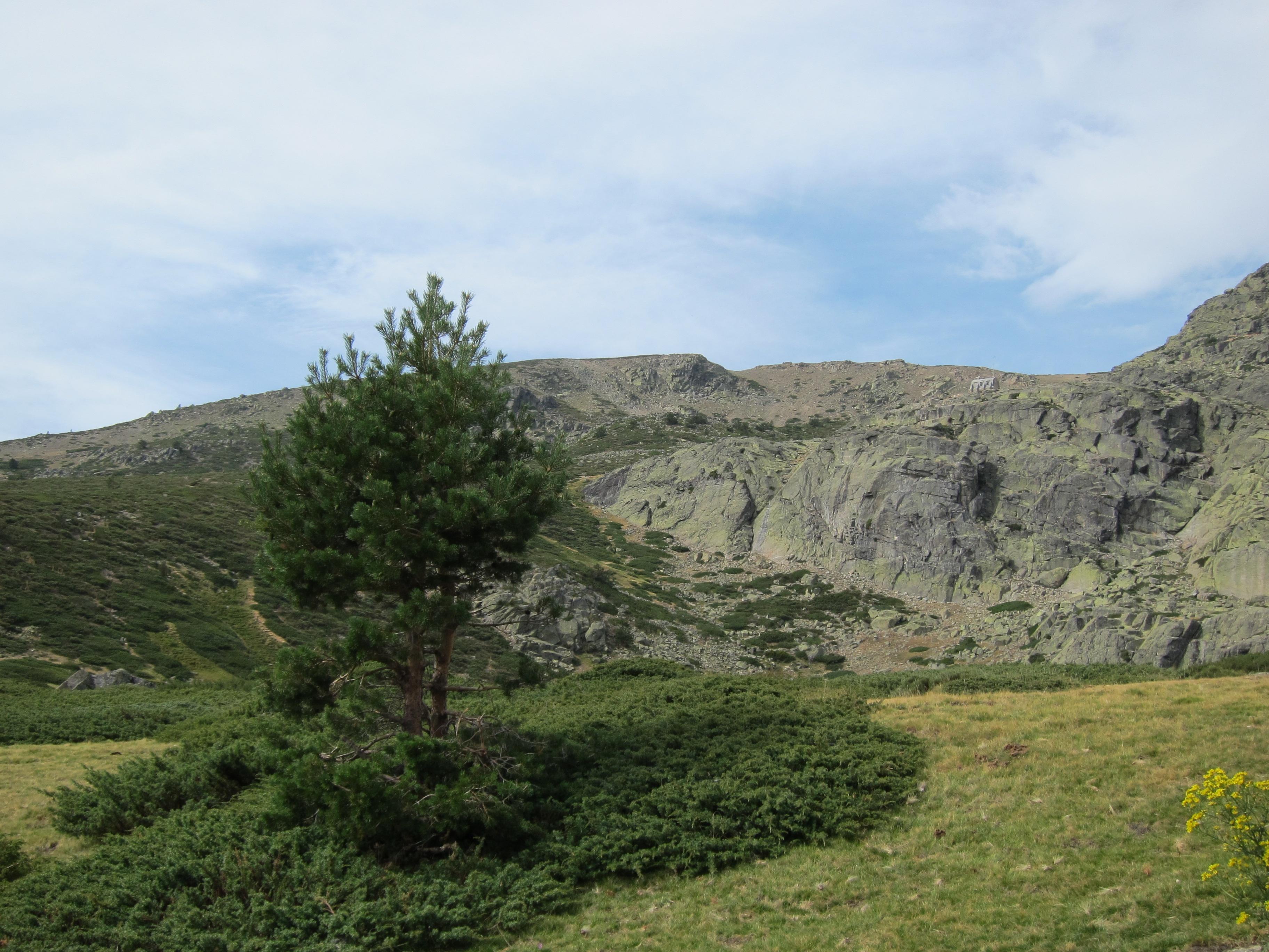 Madrid, CyL, Parques Nacionales impulsarán el turismo sostenible en el Parque Nacional de la Sierra de Guadarrama