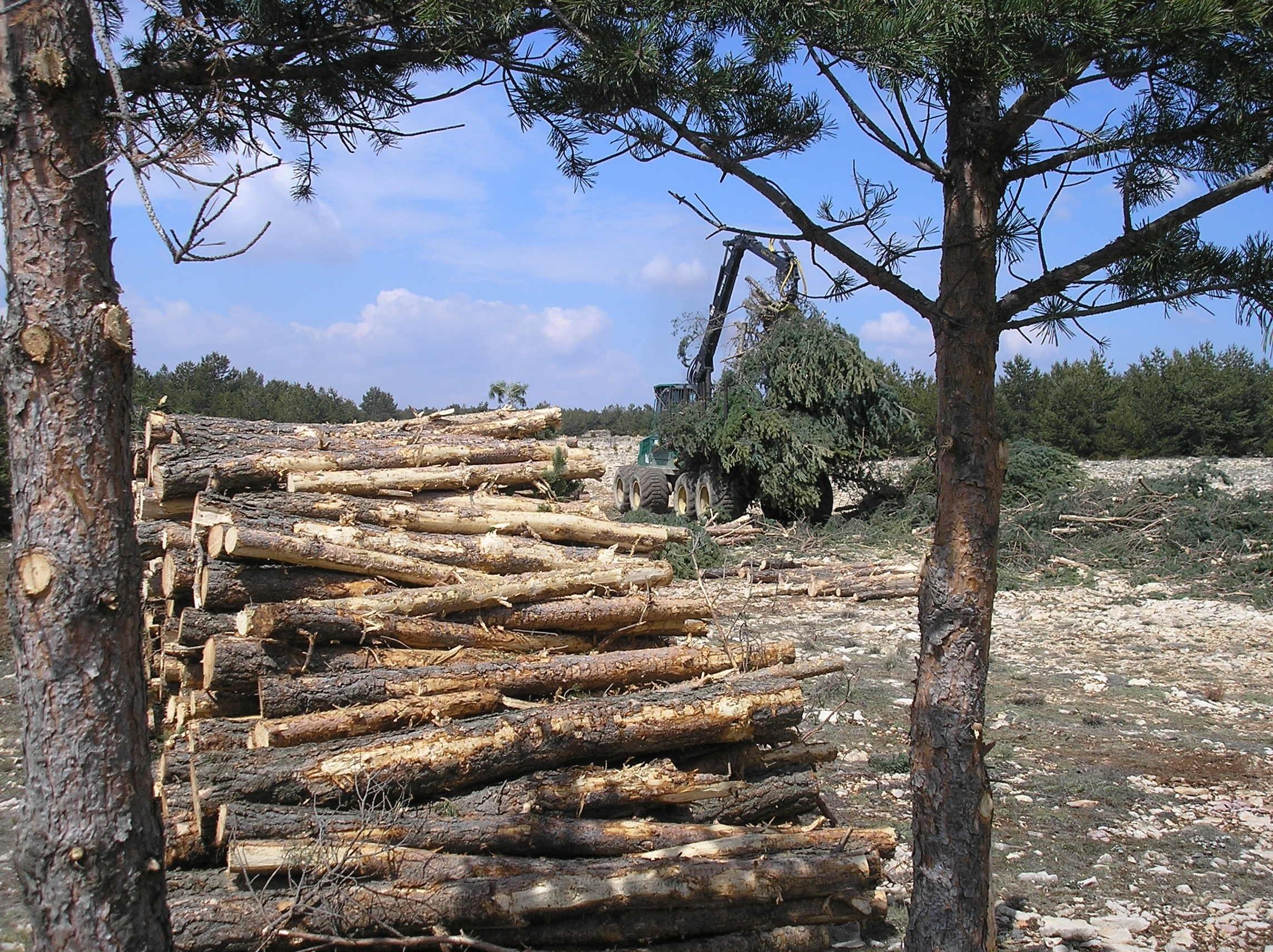 La Xunta apoya con casi 20 millones la transformación y comercialización de productos agrarios y forestales