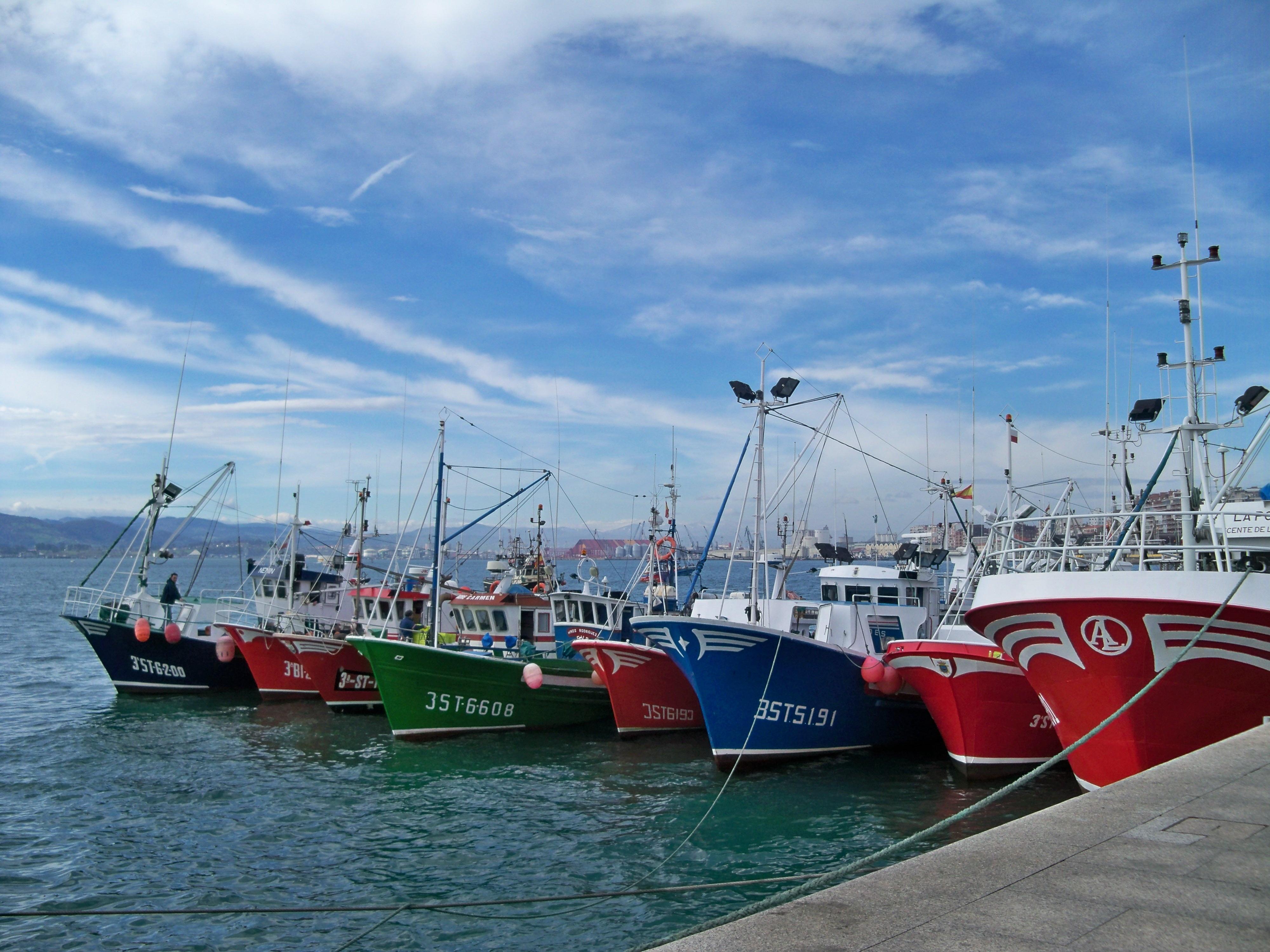 Arias Cañete espera cerrar un acuerdo sobre el reparto de la cuota de verdel en las dos próximas semanas