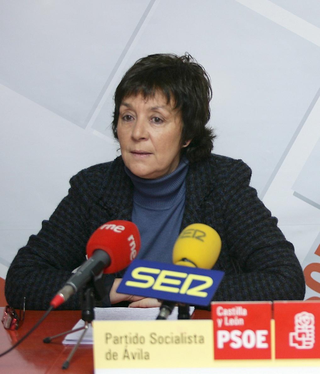 El PSOE pide un compromiso contra el copago hospitalario en sede parlamentaria