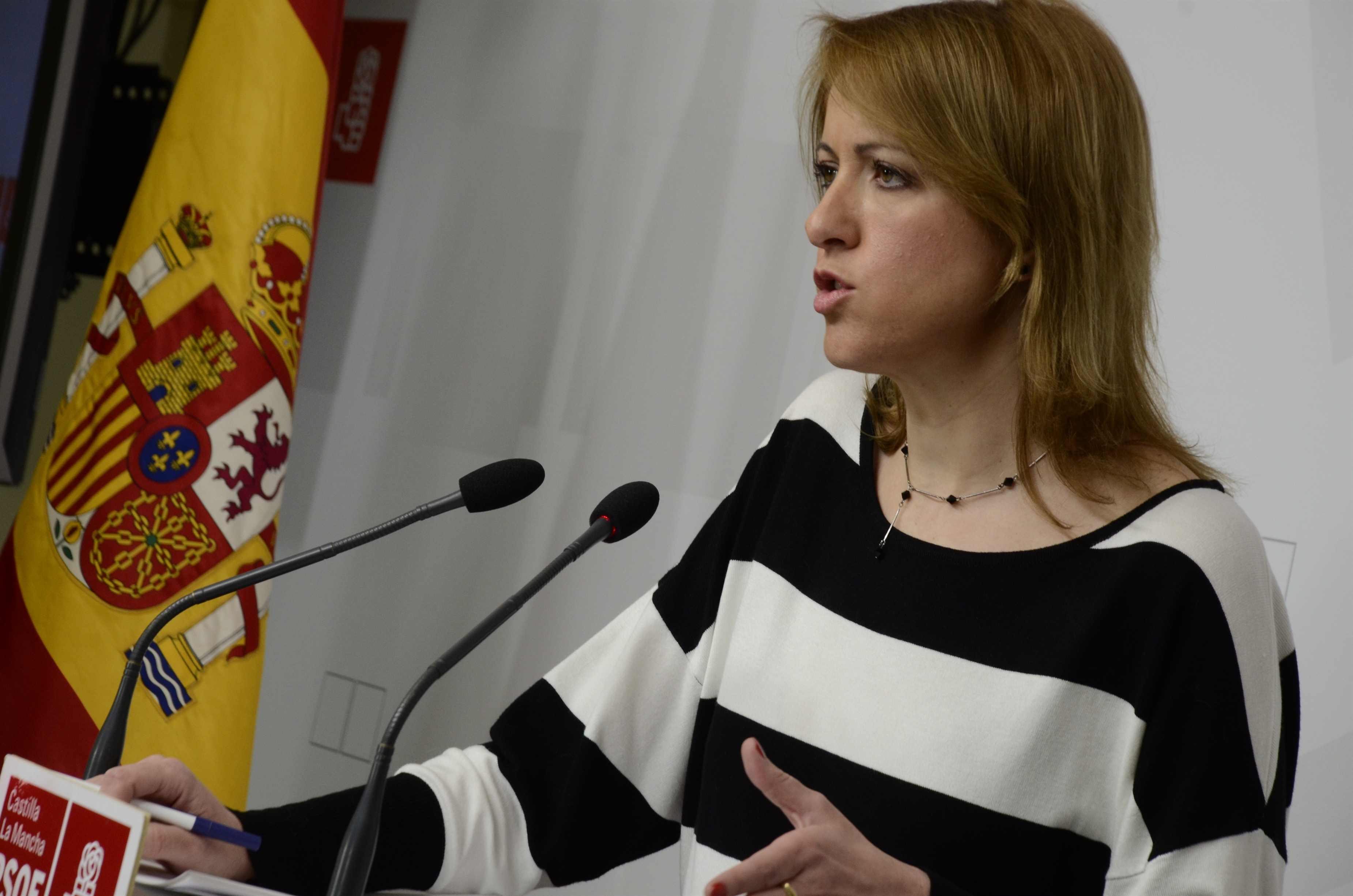 PSOE trabajará «a todos los niveles» para que el recurso previo de insconstitucionalidad de estatutos afecte al de C-LM