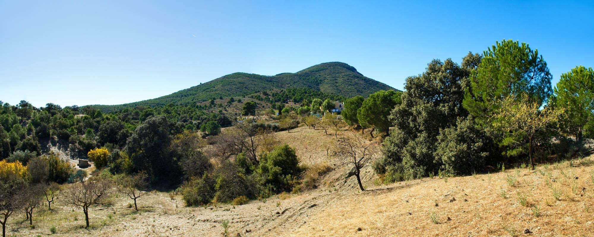 Pleno solicita la puesta en valor de las Cuevas del Cabezo de la Jara y la Sima de la Tinaja como recurso turístico