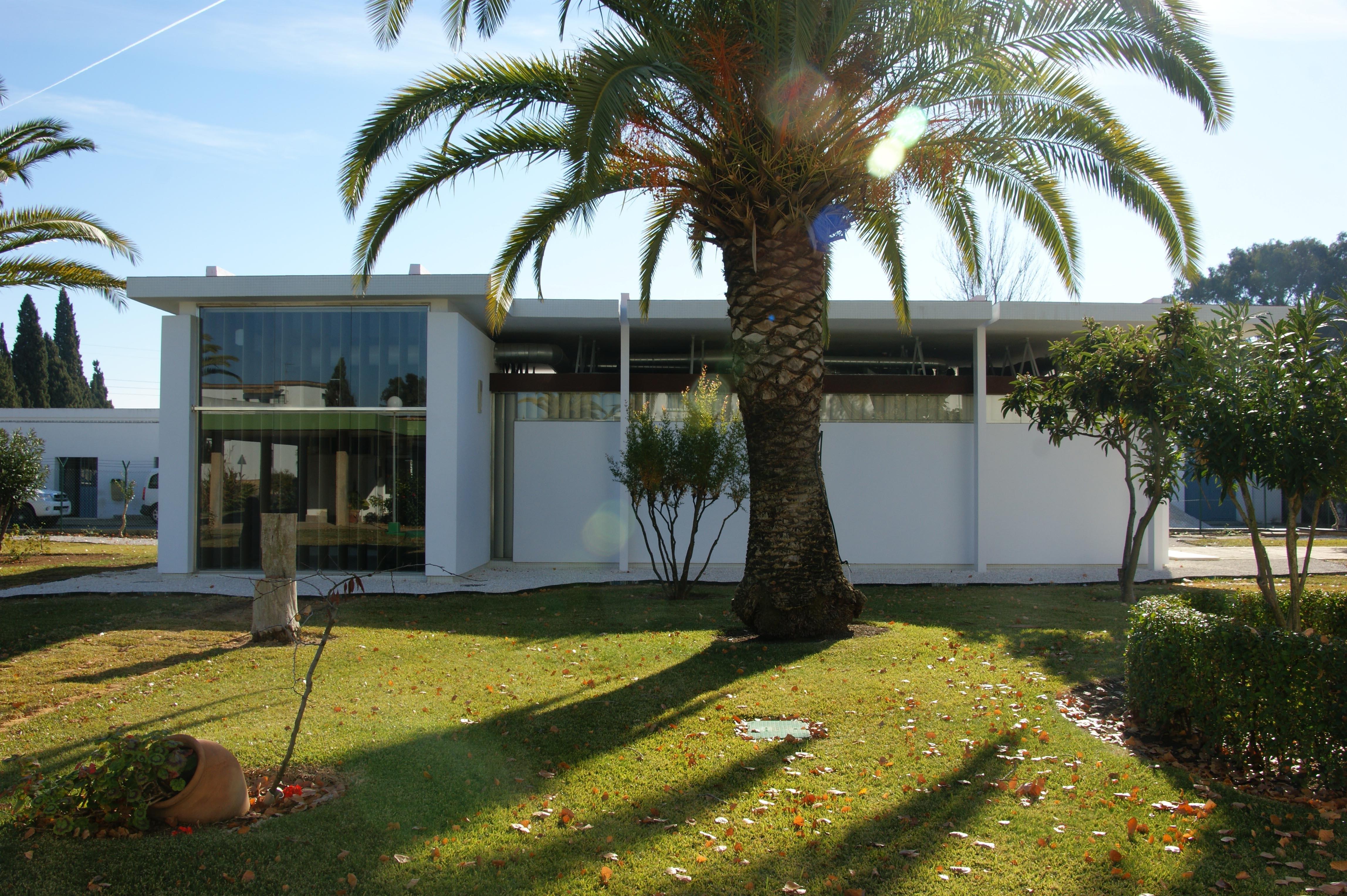 Diputación crea el espacio »Huelva inteligente» para «reforzar la presencia» de marcas onubenses en la red