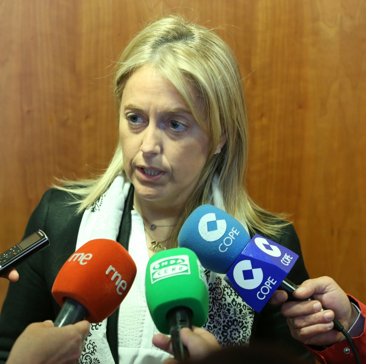 Coto critica a Soraya Rodríguez por venir a Asturias a hablar de Cascos, «una persona a la que ni conoce»