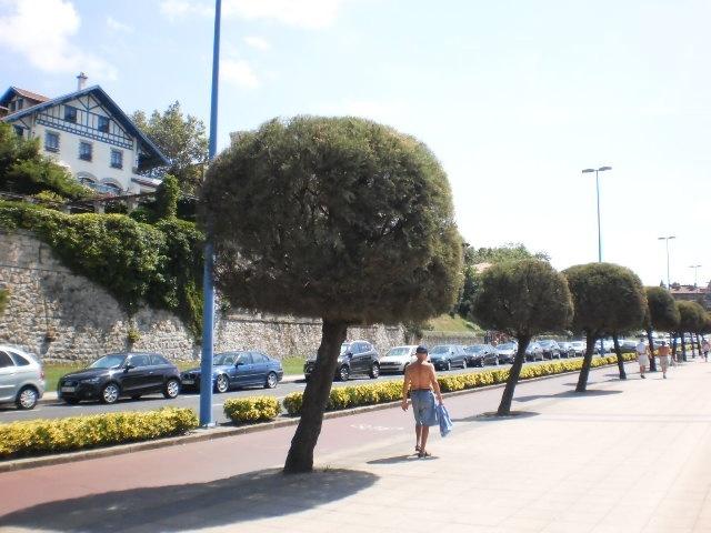 El Ayuntamiento de Getxo (Bizkaia) inicia la colocación de diez paneles para anuncios particulares