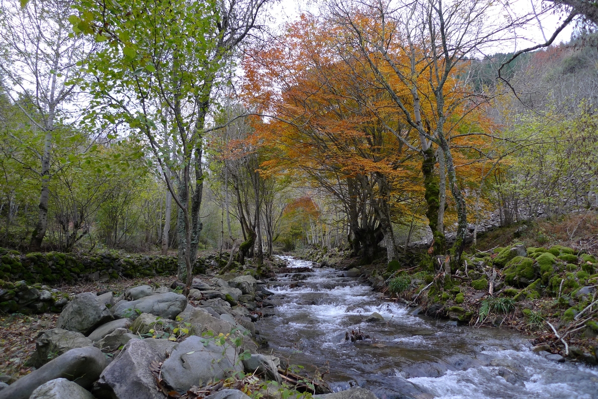 La Rioja se convierte en el primer territorio peninsular que aprueba de manera oficial la totalidad de la Red Natura 200