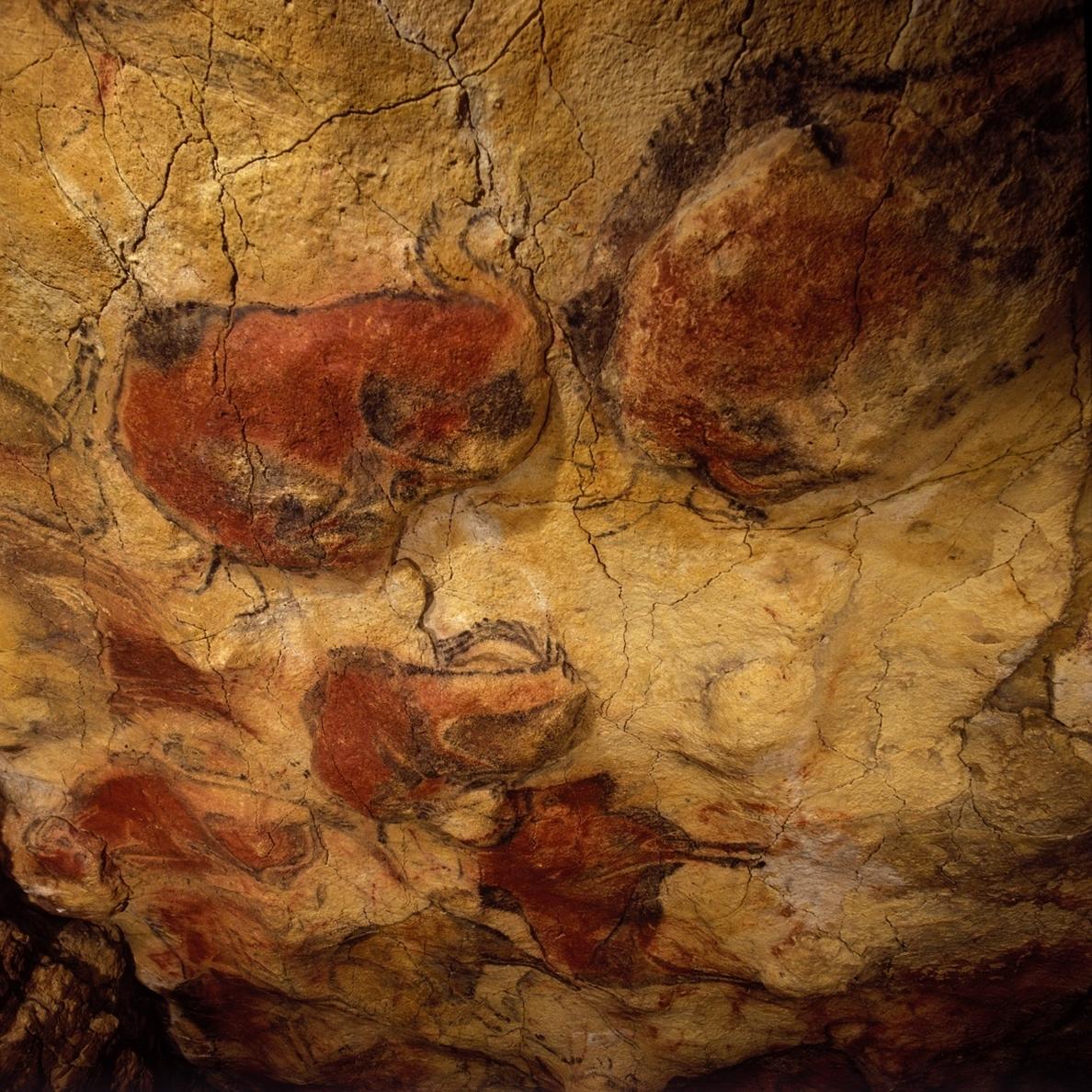 Las visitas experimentales con público a la cueva de Altamira comienzan este jueves