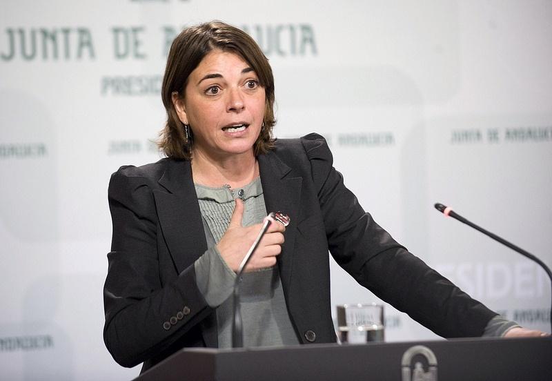 IU-CA presume de que PSOE-A asume sus «tesis» sobre construcción sostenible tras «coqueteos» con una vuelta al ladrillo