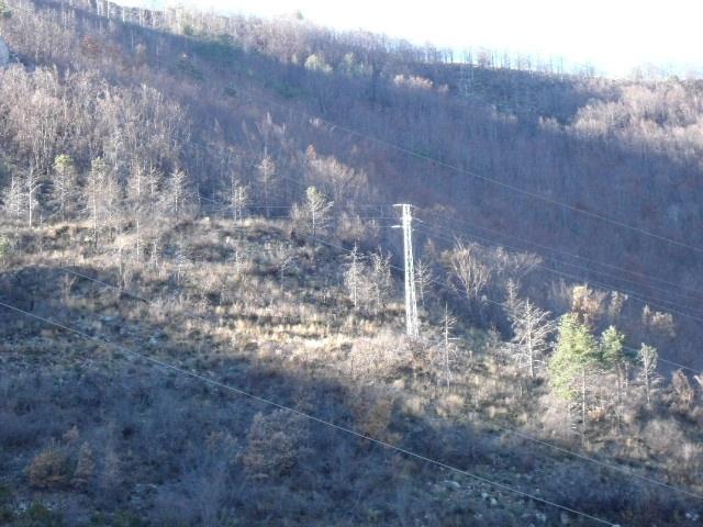 Endesa renueva dos líneas para mejorar el servicio a tres municipios del Alt Pirineu