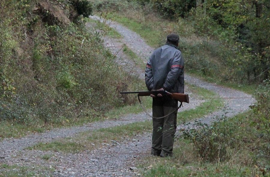 Los cazadores de Madrid tendrán una única licencia para cazar también en Extremadura, CyL y C-LM