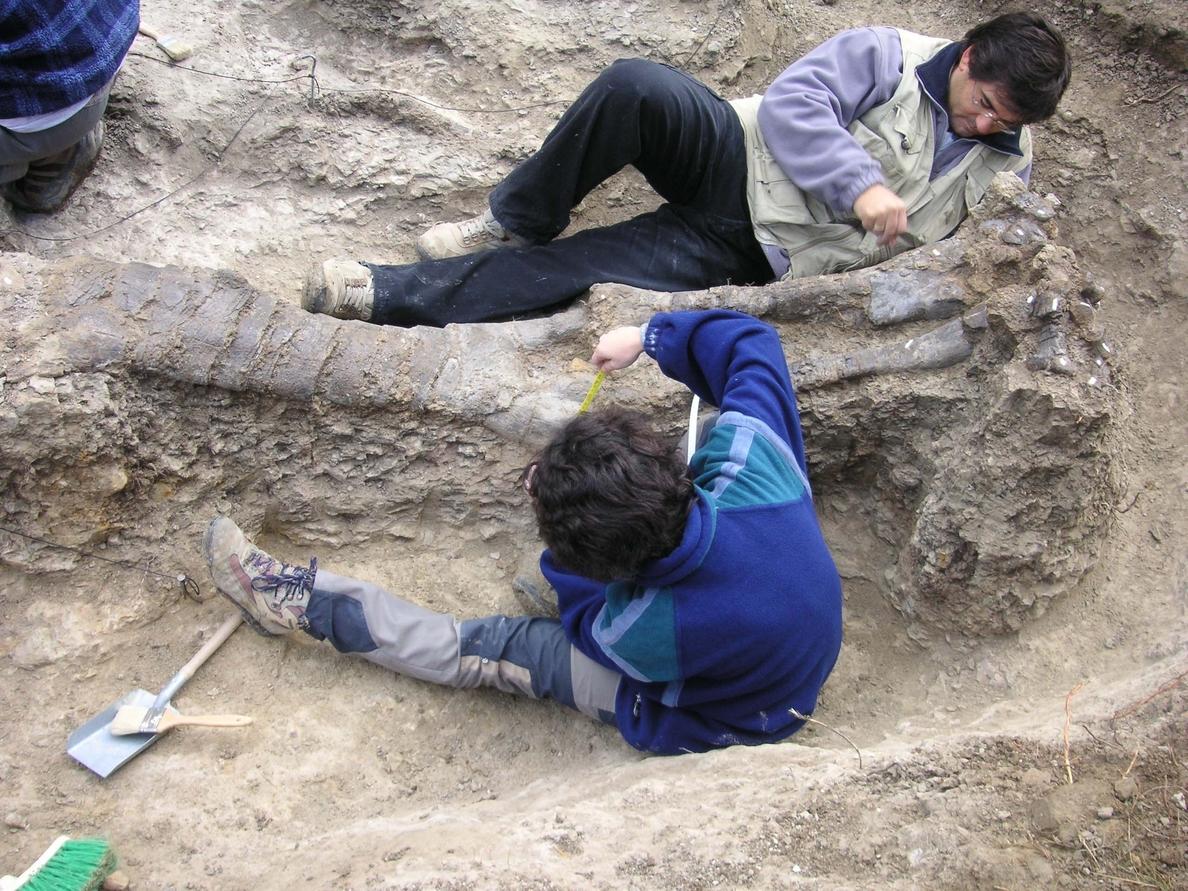 La Fundación Conjunto Paleontológico de Teruel y la Universidad Complutense abren un espacio de colaboración científica