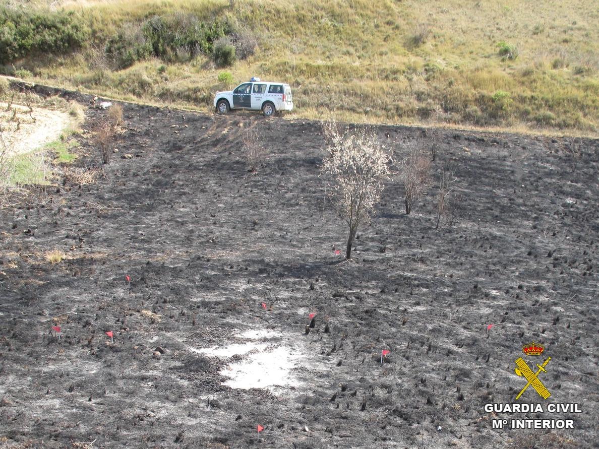 El Seprona imputa a dos personas por incendios forestales en Autol y Ábalos