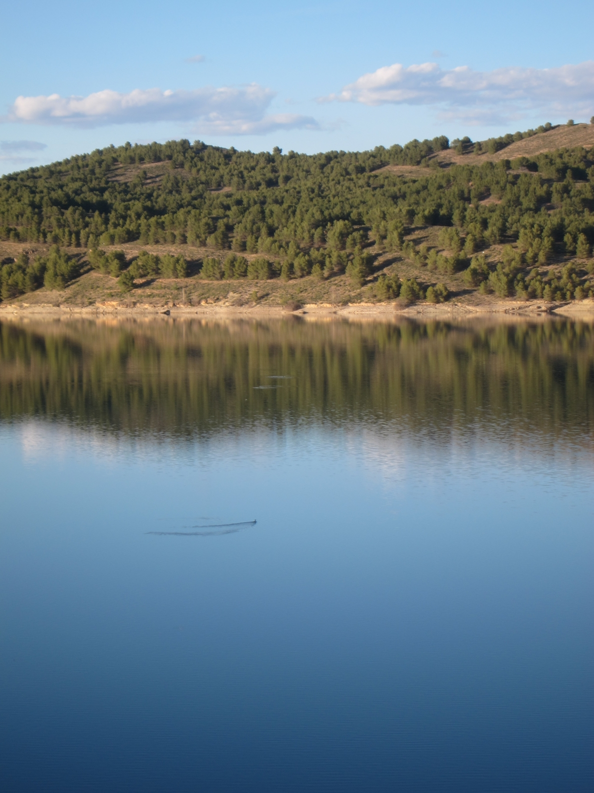 La reserva de agua de los embalses de la Cuenca del Ebro se encuentra al 84%