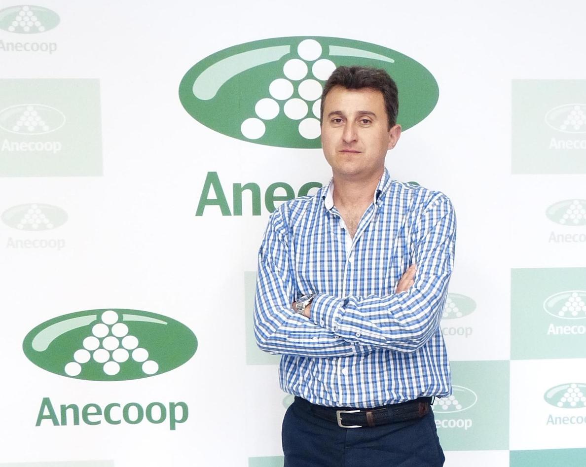 Alejandro Monzón, nuevo presidente de Anecoop