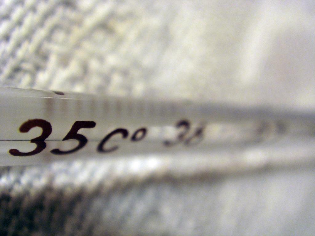 Los termómetros de mercurio pasarán a la historia en la Unión Europea