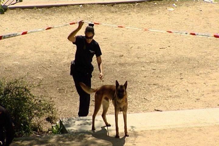 Detenida por encubrimiento la actual pareja de la acusada de enterrar a su bebé en un parque de Villaverde (Madrid)