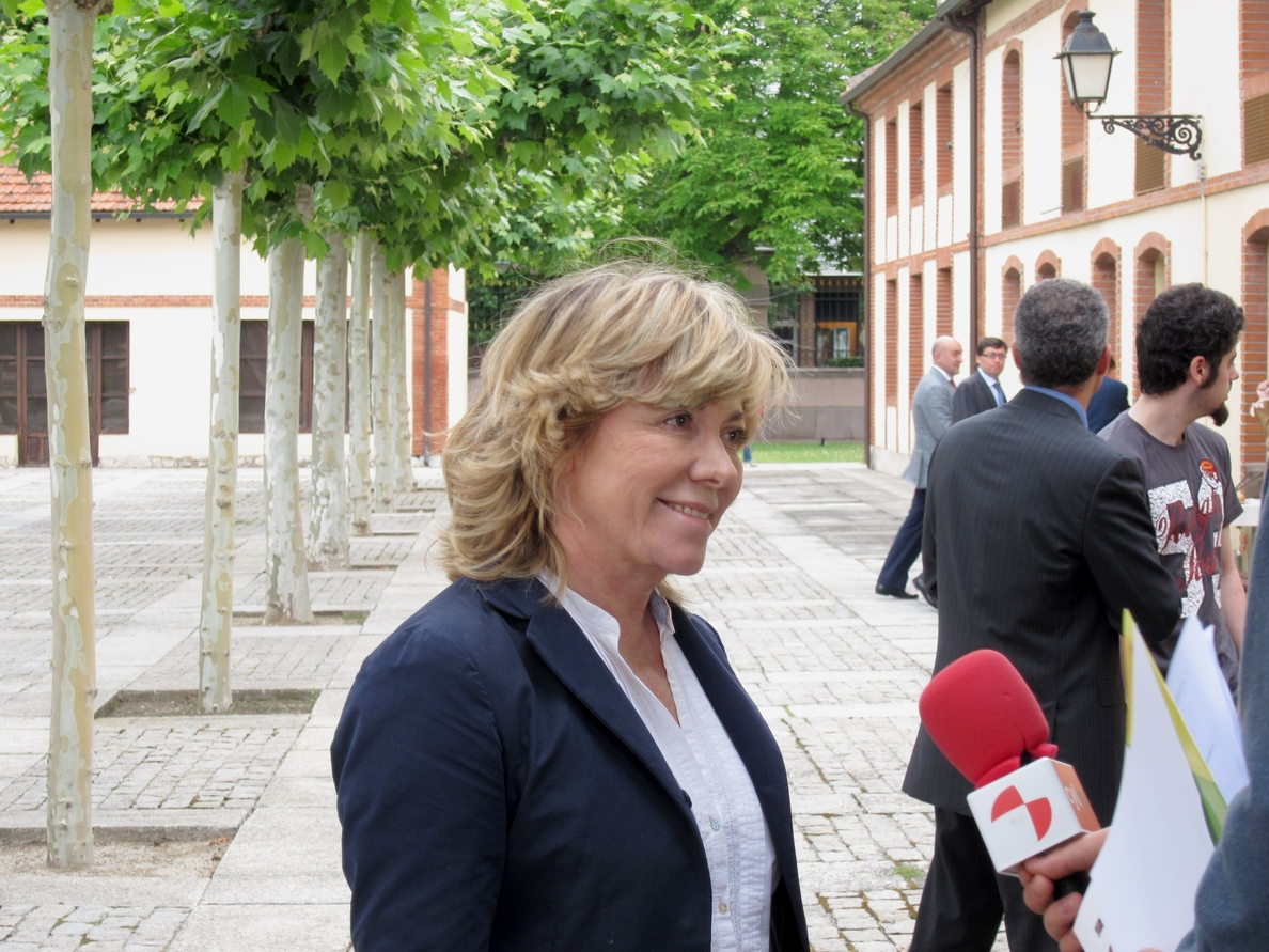 Del Castillo (PP) no ve que se acerque el fin del bipartidismo aunque PP y PSOE pierdan votos en las europeas