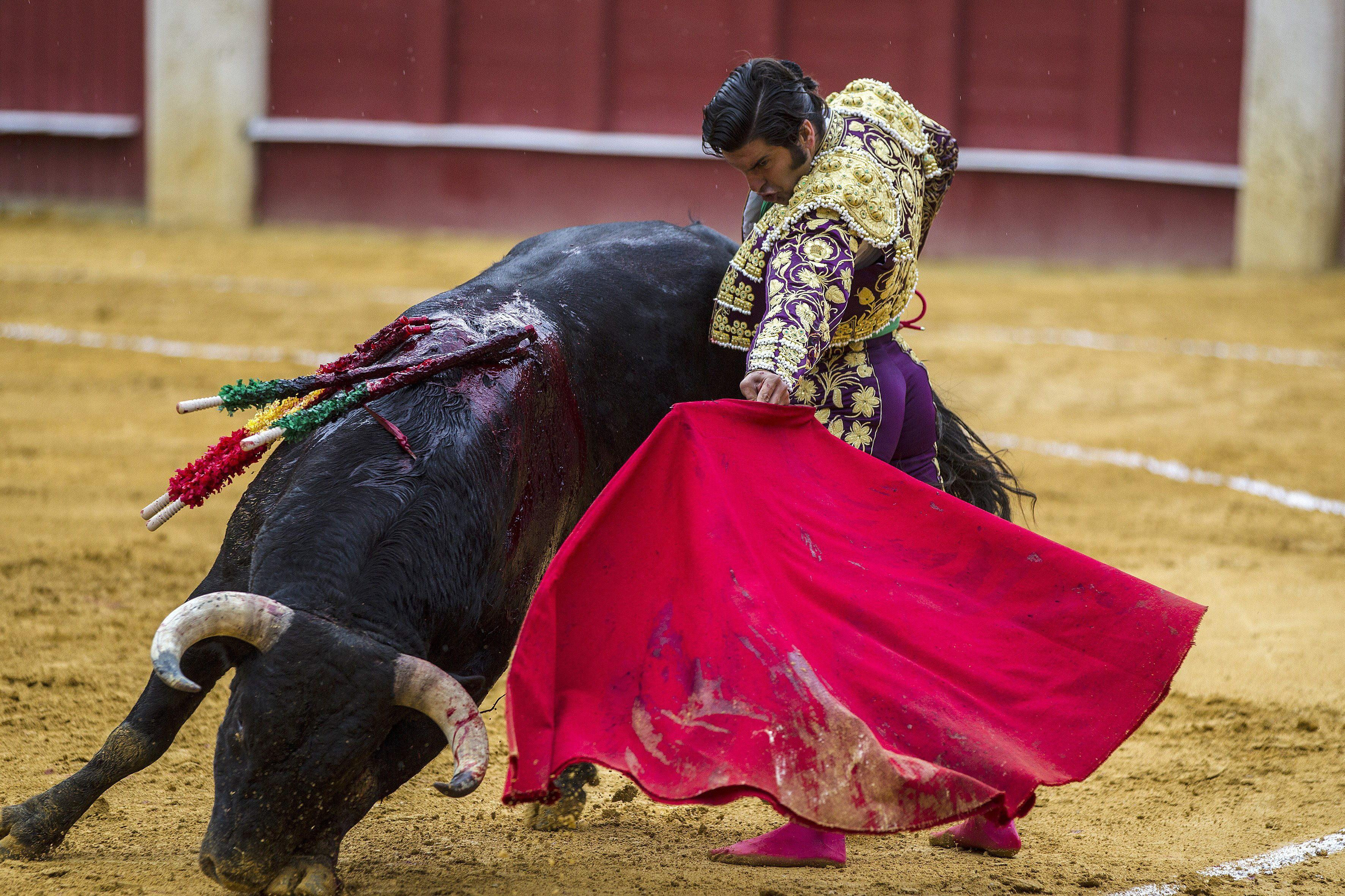 Morante se lesiona y hace peligrar el mano a mano con Finito en Zaragoza