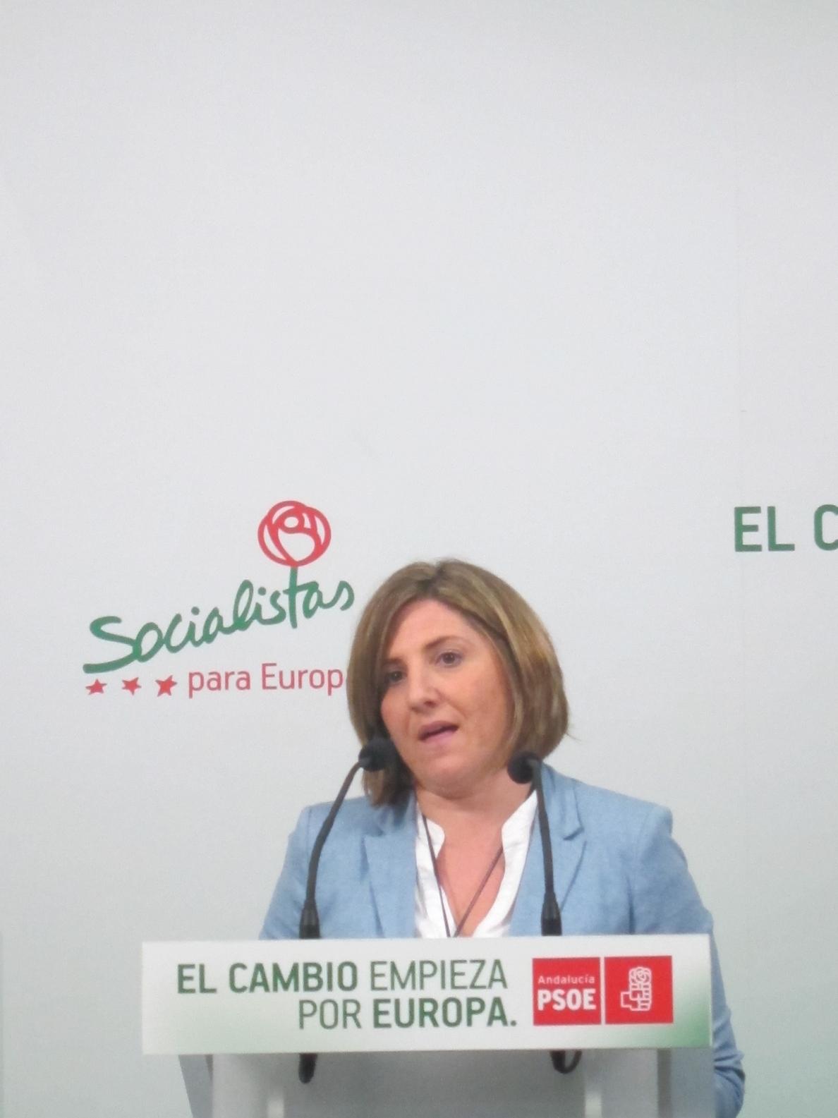 PSOE desea que el programa de Inversiones Integradas sea «útil» y coordinado entre Gobierno y Junta