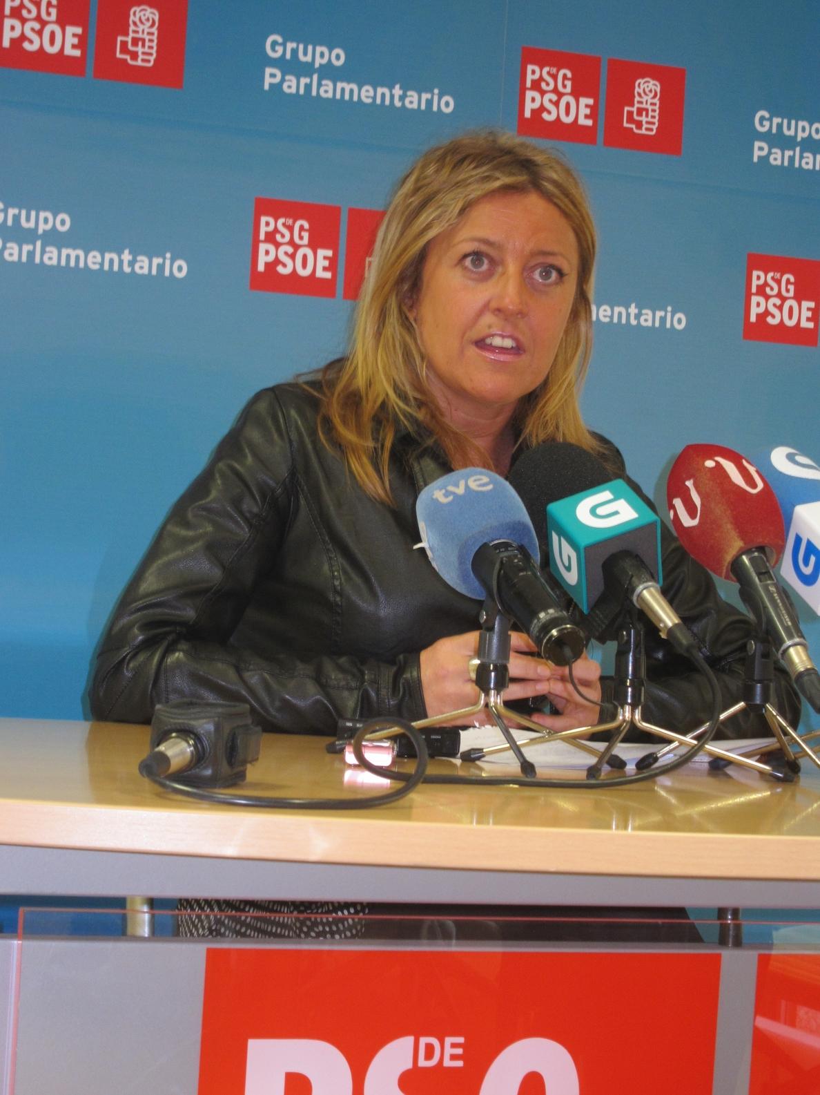 El PSdeG tilda a Feijóo de «cómplice silente» de Gallardón para «alejar» a la ciudadanía del derecho a la Justicia