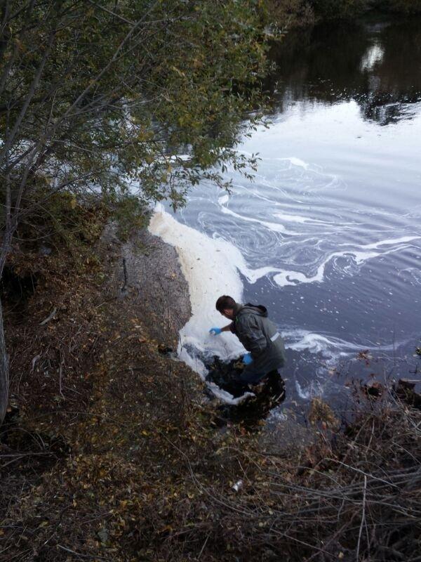 El secretario de Estado de Medio Ambiente inaugura una jornada sobre el estado del Lago de Sanabria (Zamora)