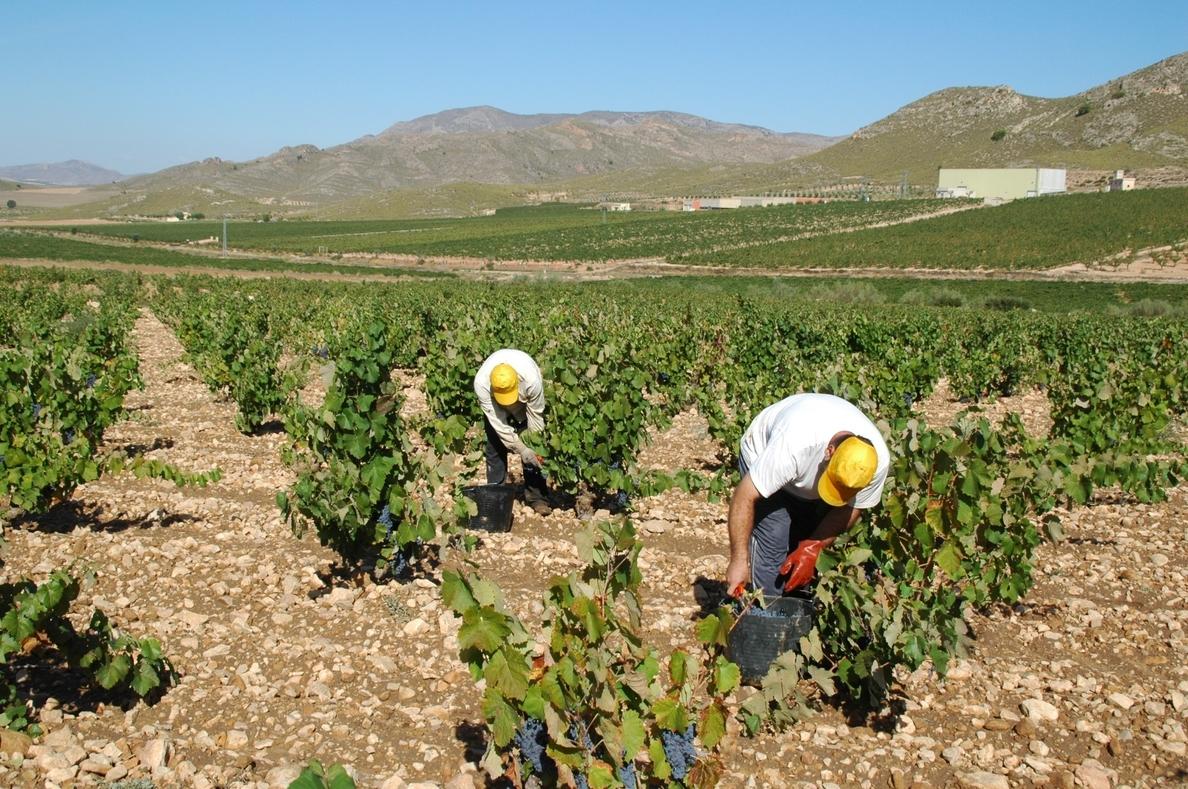 Los extranjeros afiliados a la Seguridad Social en Aragón se sitúan en 50.978, en marzo