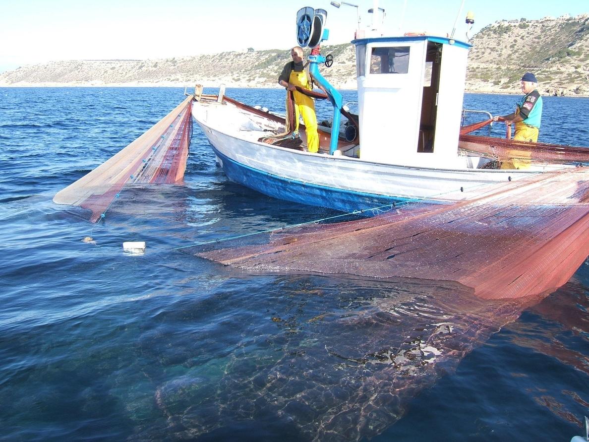 La temporada de pesca del jonquillo acaba con 17,4 toneladas capturadas y una facturación de 365.000 euros