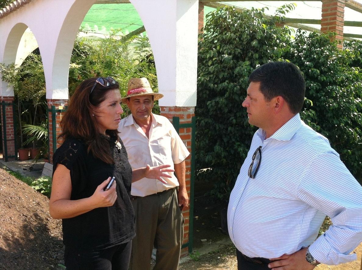 La Diputación de Málaga reparte 50.000 árboles y plantas en la zona afectada por el incendio de Barranco Blanco de 2012