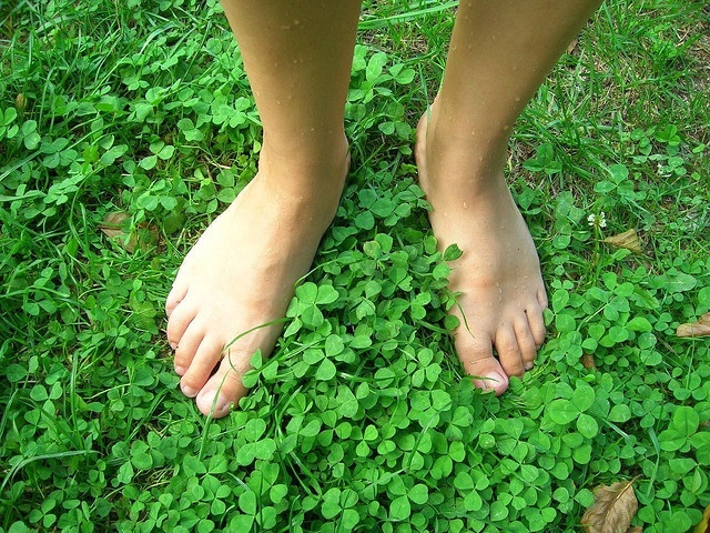 Infecciones en los pies como el papiloma plantar son más propensas en verano, según un experto