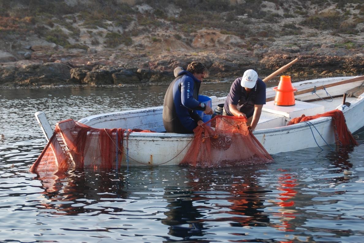 El Gobierno actualiza la normativa sobre buceo de recreo en las reservas marinas