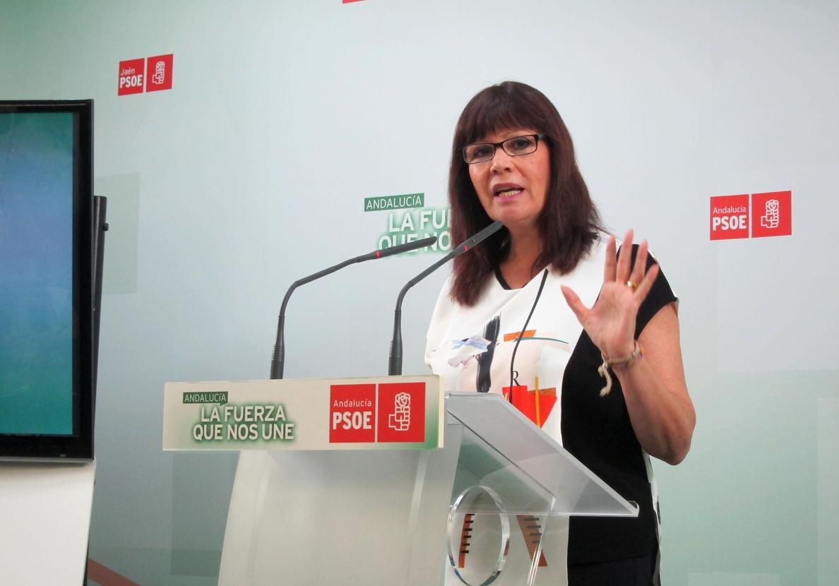 Navarro asegura que «el Gobierno siempre ha tenido apoyo del PSOE» en este tipo de cuestiones