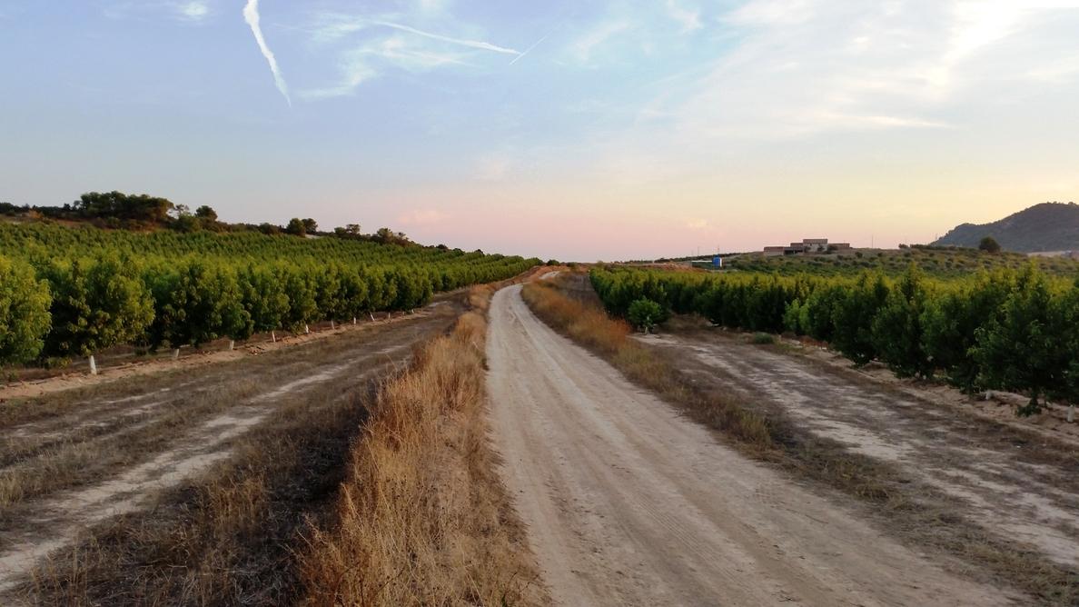 Mequinenza destina 65.000 euros a mejorar sus caminos