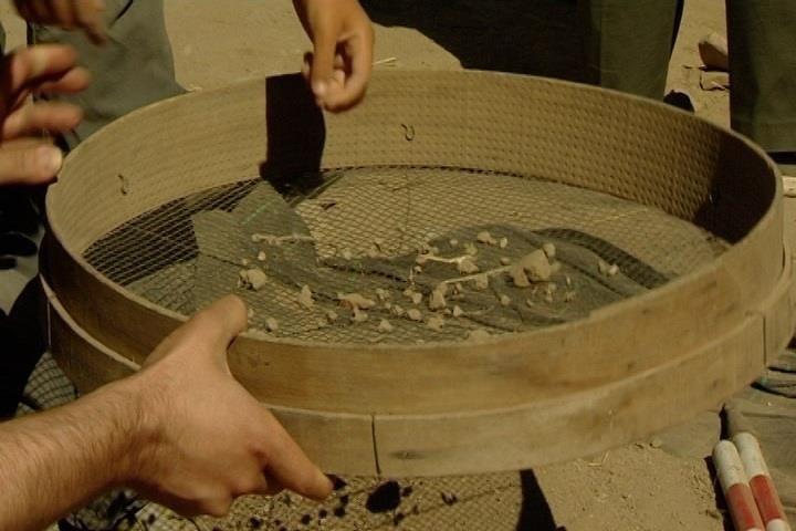 Complutum permite a padres e hijos ser arqueólogos durante el verano