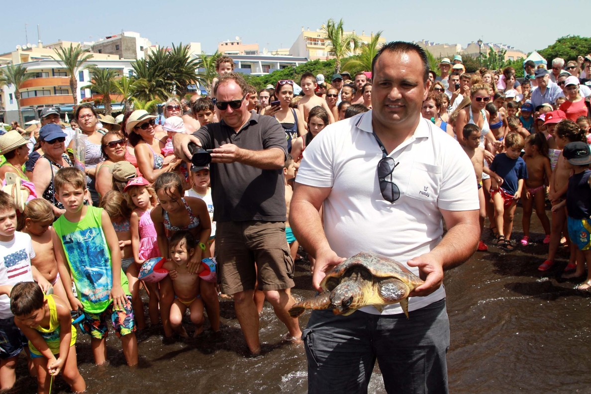 Liberan dos tortugas marinas en Playa San Juan, Guía de Isora (Tenerife)