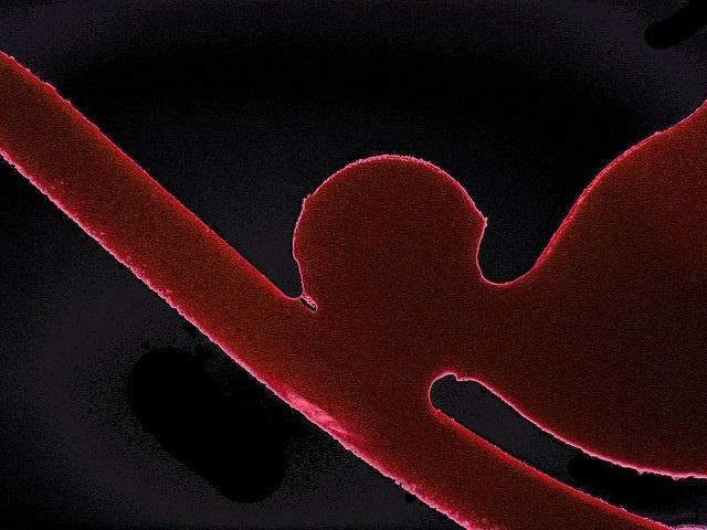 Científicos desbloquean la clave para la formación de vasos sanguíneos