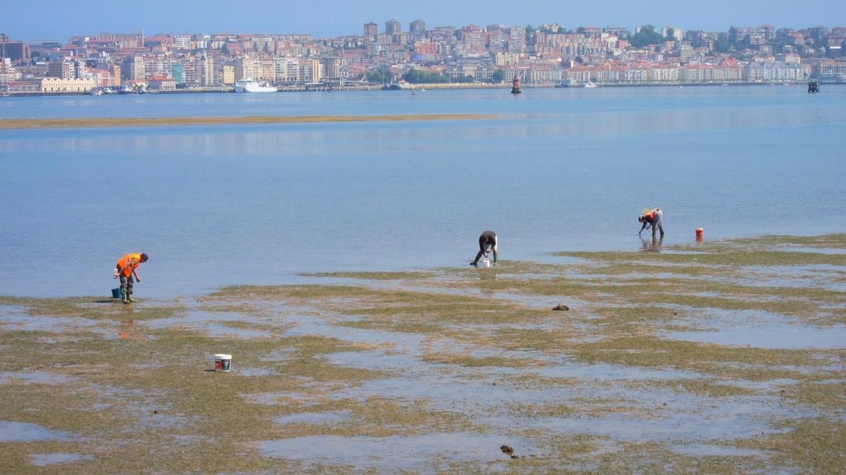 Empieza el pilotaje del sistema de videovigilancia inteligente contra el furtivismo en el litoral gallego