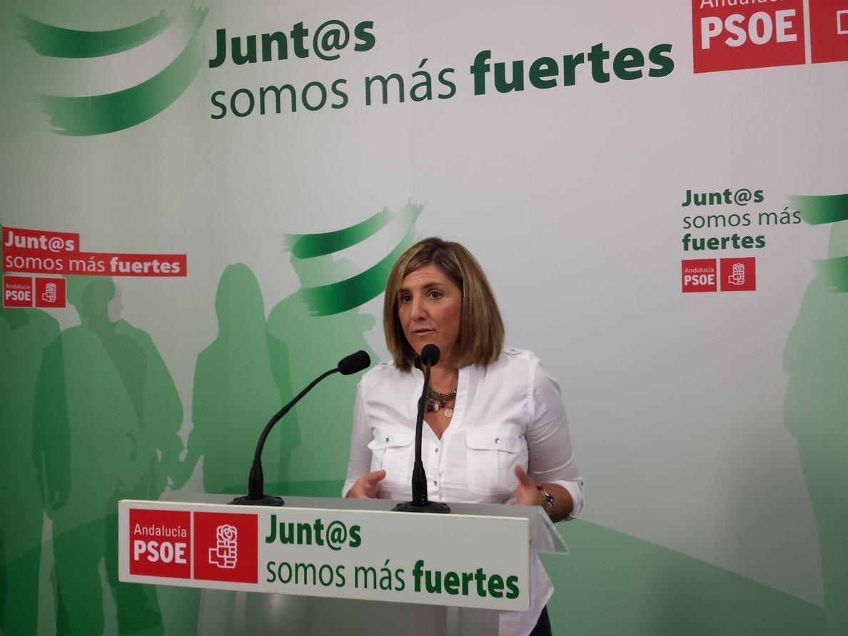 El PP apunta a una dirigente del PSOE de Cádiz como «cómplice del fraude» del exconsejero Ojeda