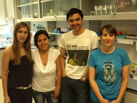 Una investigación española abre la puerta al desarrollo de nuevas terapias para el daño medular