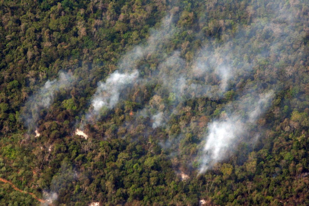 Controlado un 30 por ciento de un incendio cerca del parque Yosemite en EE.UU.