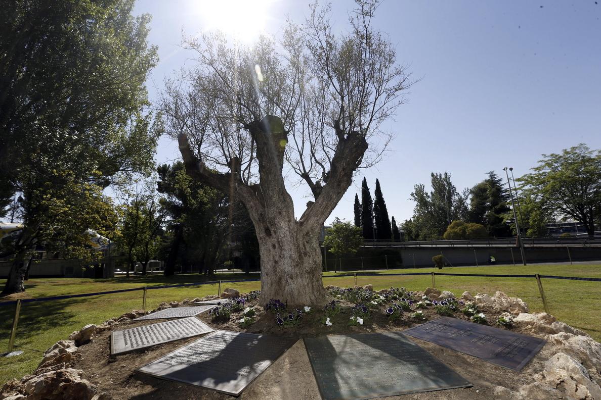 Las víctimas de Spanair conmemoran el sexto aniversario del accidente