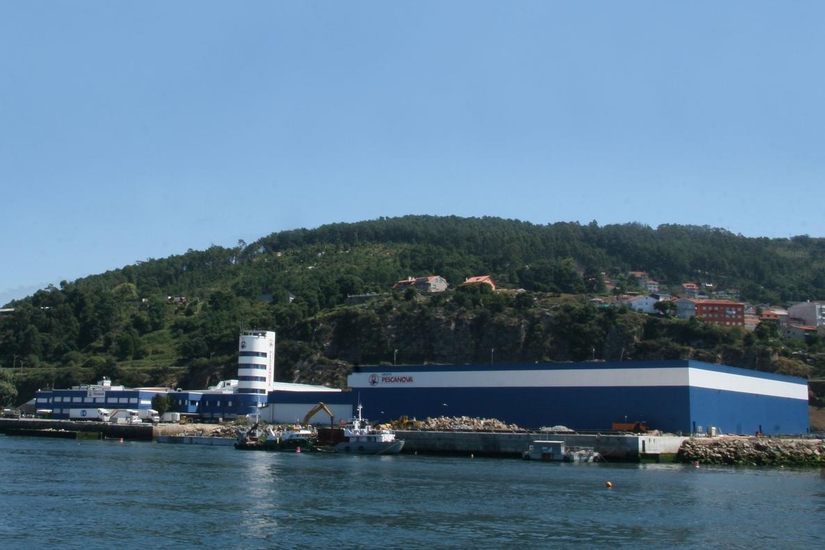 (Ampl.) La noruega Marine Harvest compra Acuinova Chile, filial de Pescanova, por 93,14 millones