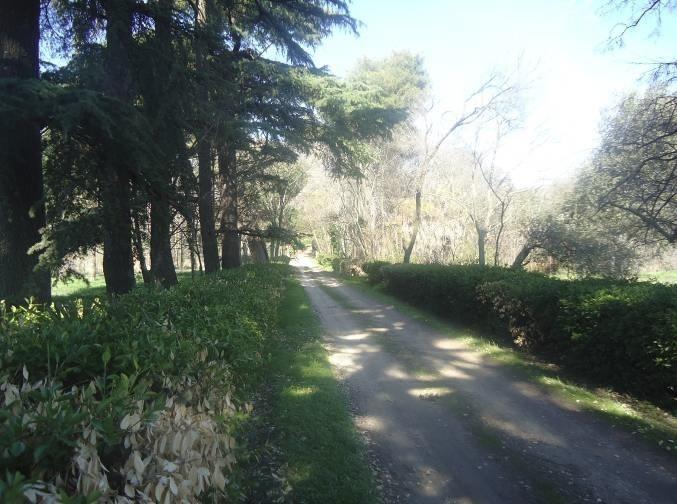 Los jardines de Torre Arias se abrirán al público desde el 2 de octubre con visitas guiadas