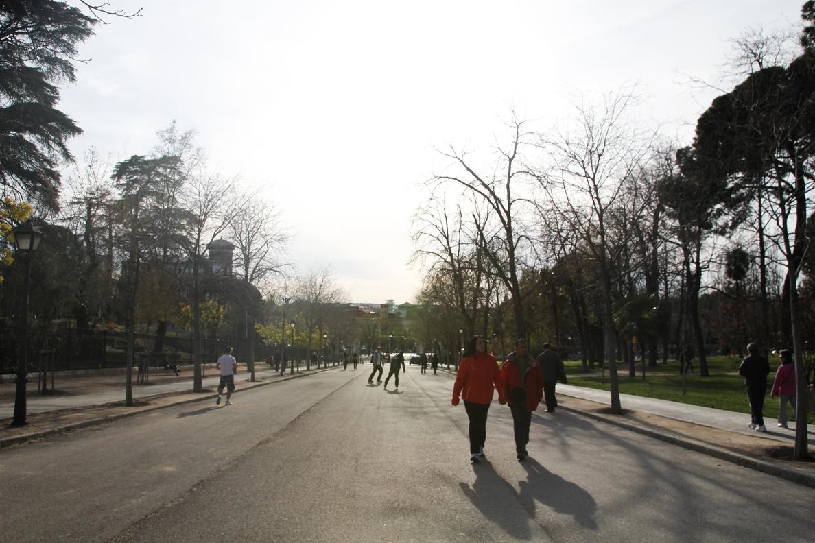 Madrid es la capital europea con más árboles, con cerca de 300.000