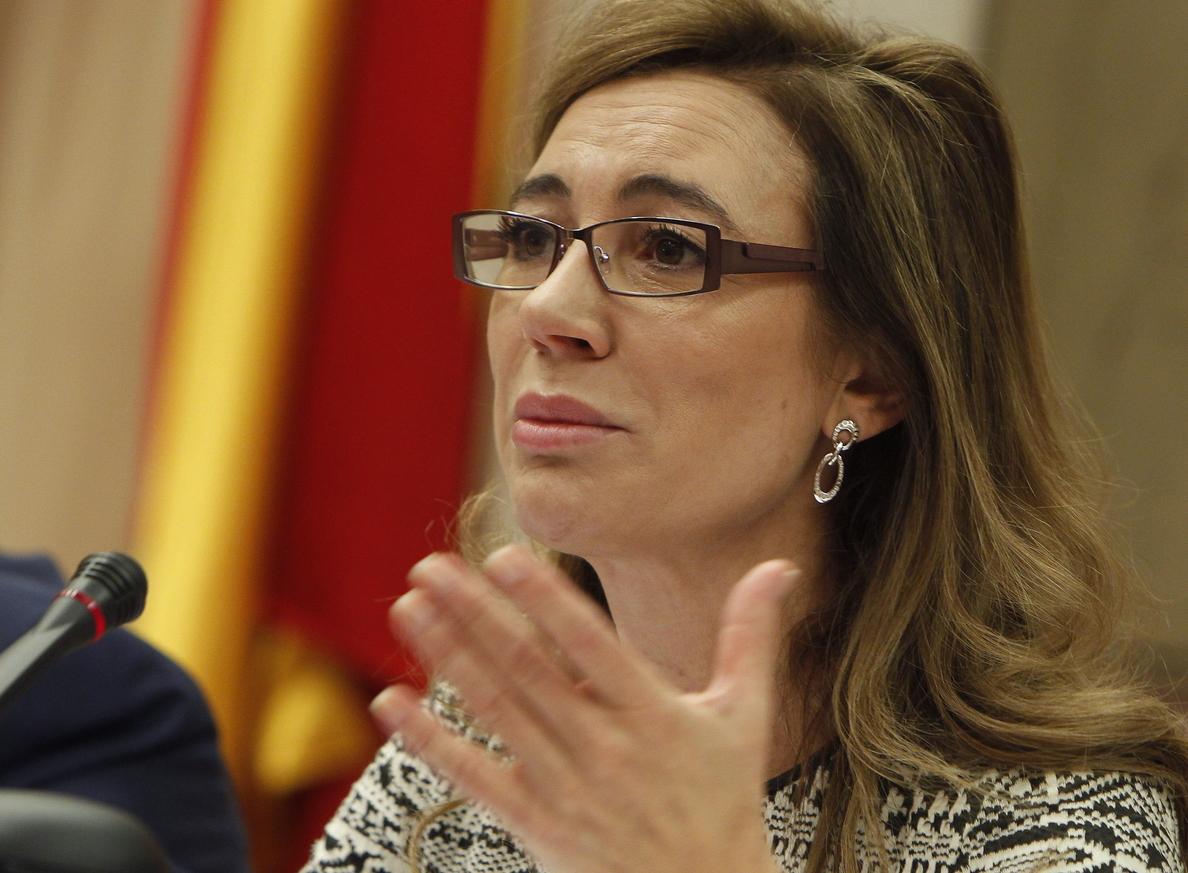 Fernández Currás afirma que Hacienda no puede «consentir» las tarjetas opacas